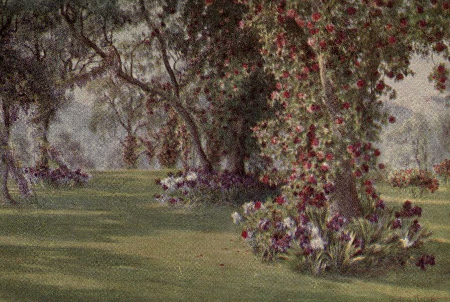 A Book of Old-World Gardens - A Paradise (1918)