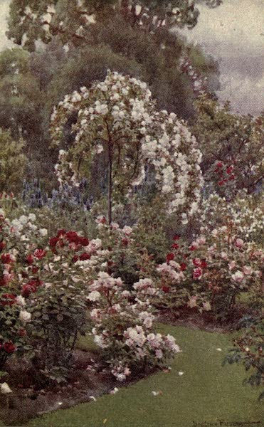 A Book of Old-World Gardens - Rose Garden, Eton College (1918)