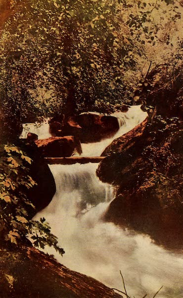 A Day in the Siskiyous - Brave Rapids that Surge in Swift Release (1916)