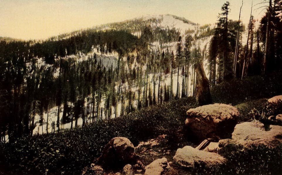 A Day in the Siskiyous - Mt. Ashland's Hundred-Footed-Depth of Wind-Piled Snow (1916)