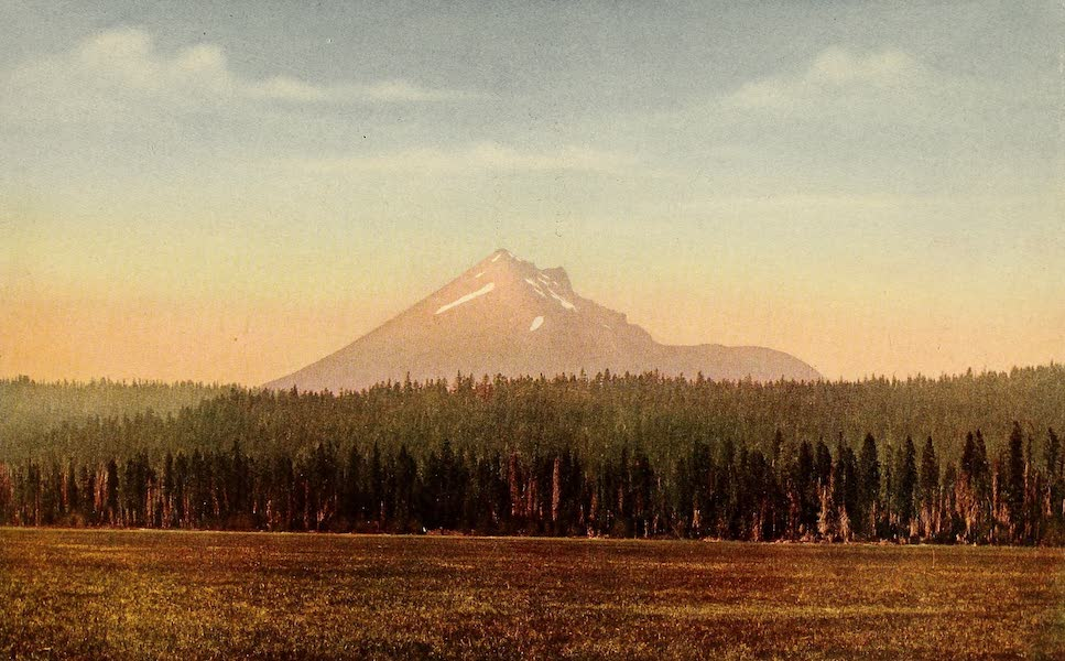 A Day in the Siskiyous - A Cloud of Pine and Fir (1916)
