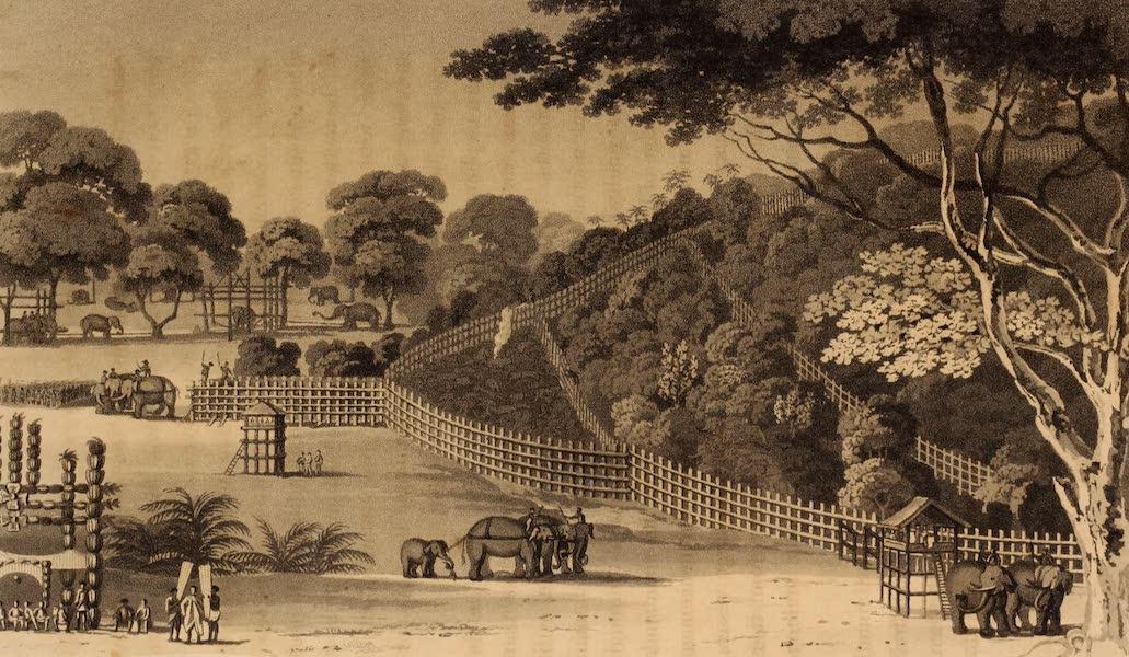 A Description of Ceylon Vol. 1 - Elephant Snare at Kotawy (1807)