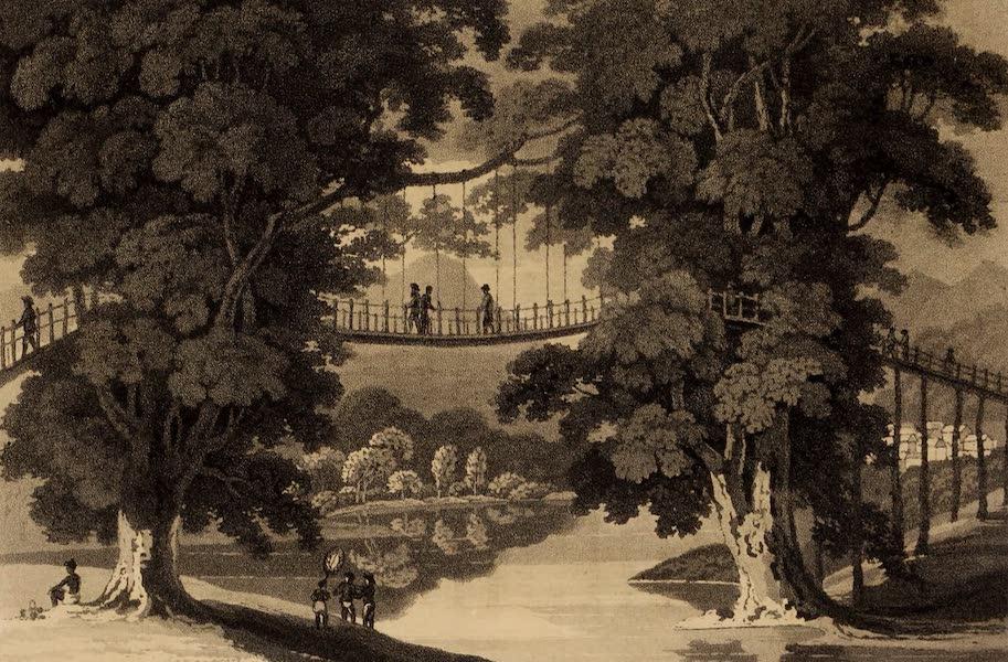 A Description of Ceylon Vol. 2 - The Hanging Bridge near Idemalpany (1807)