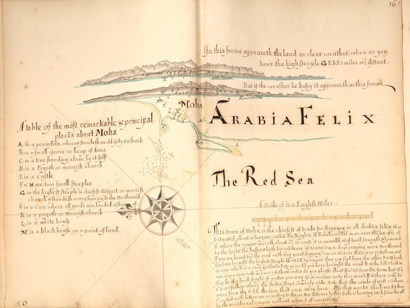 16) Moha, Arabian Felix, the Red Sea