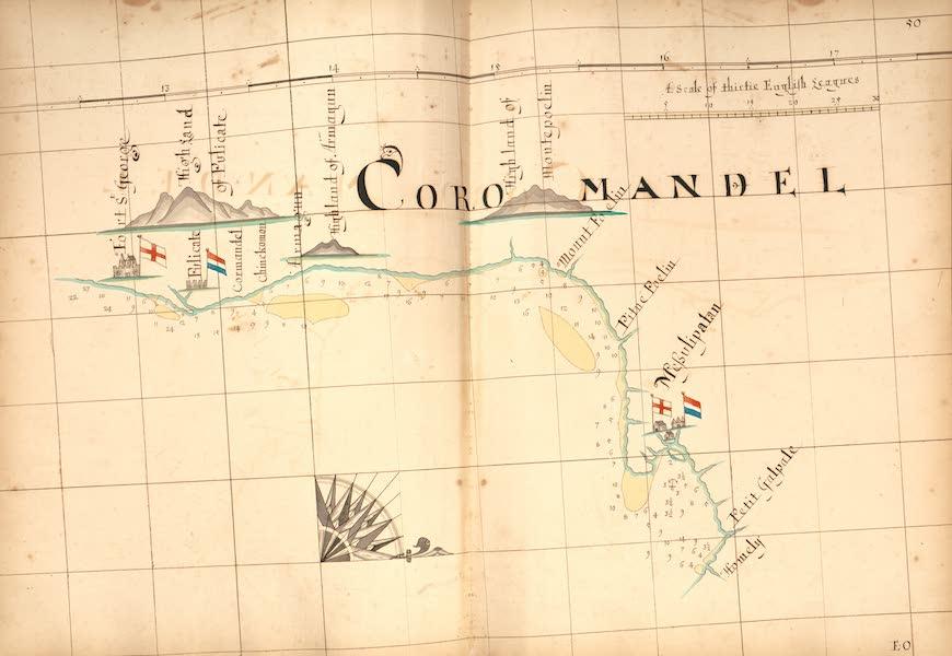 50) Coramandel [III]