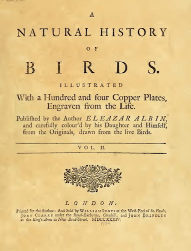 Aquatint & Lithography - A Natural History of Birds Vol. 2