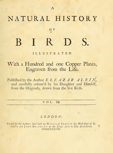 Aquatint & Lithography - A Natural History of Birds Vol. 3