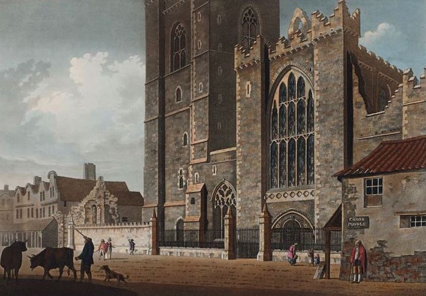 A Picturesque and Descriptive View of the City of Dublin - West Front of St. Patricks Cathedral (1811)