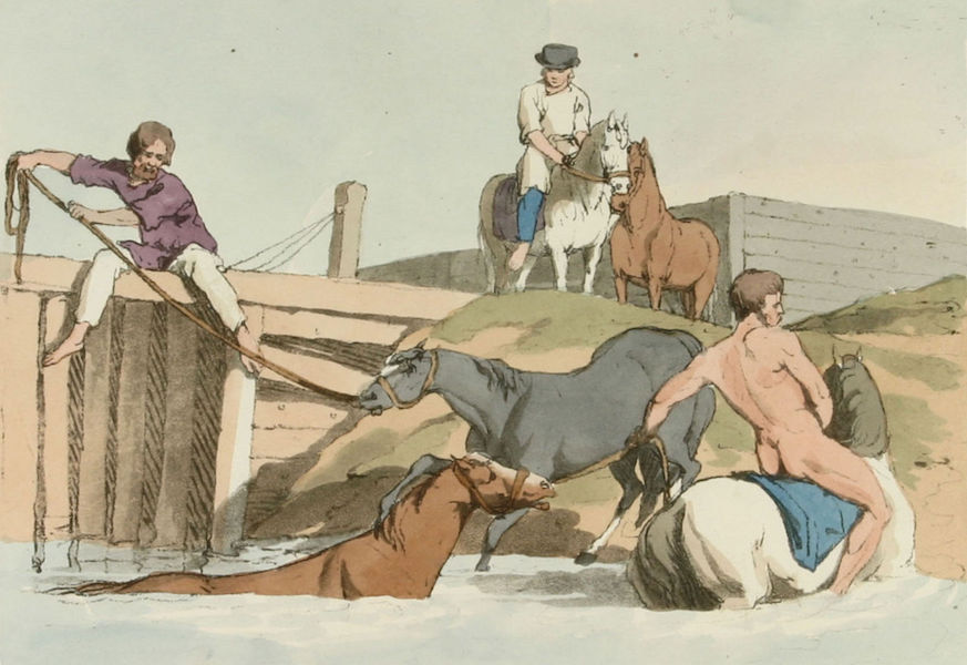 A Picturesque Representation of the Russians Vol. 1 - Bathing Horses (1803)
