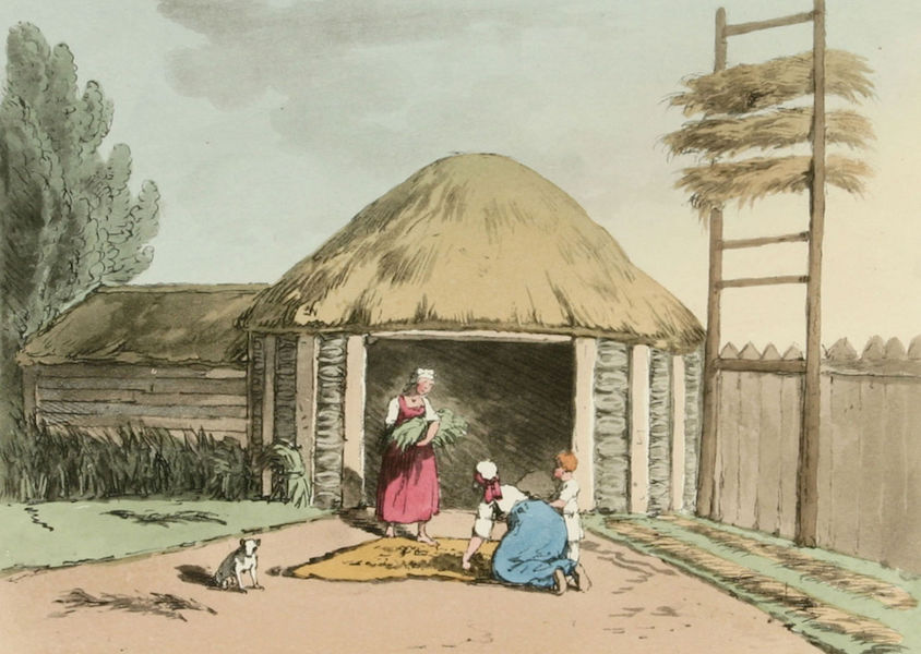 A Picturesque Representation of the Russians Vol. 3 - Sorting & Drying Hemp (1804)