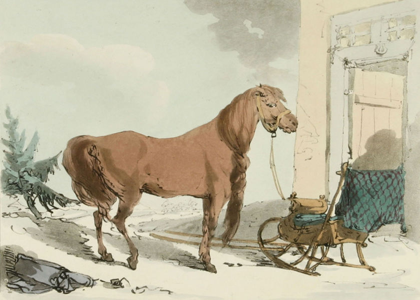 A Picturesque Representation of the Russians Vol. 3 - Trotting Horse (1804)