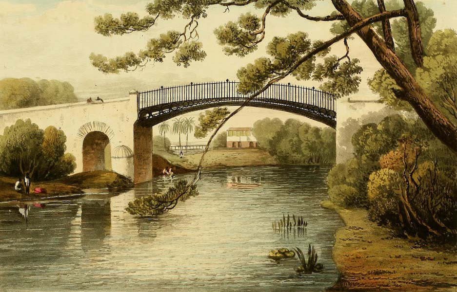 A Picturesque Tour of the Island of Jamaica - Bridge over the Rio Cobre, at Spanish Town (1825)
