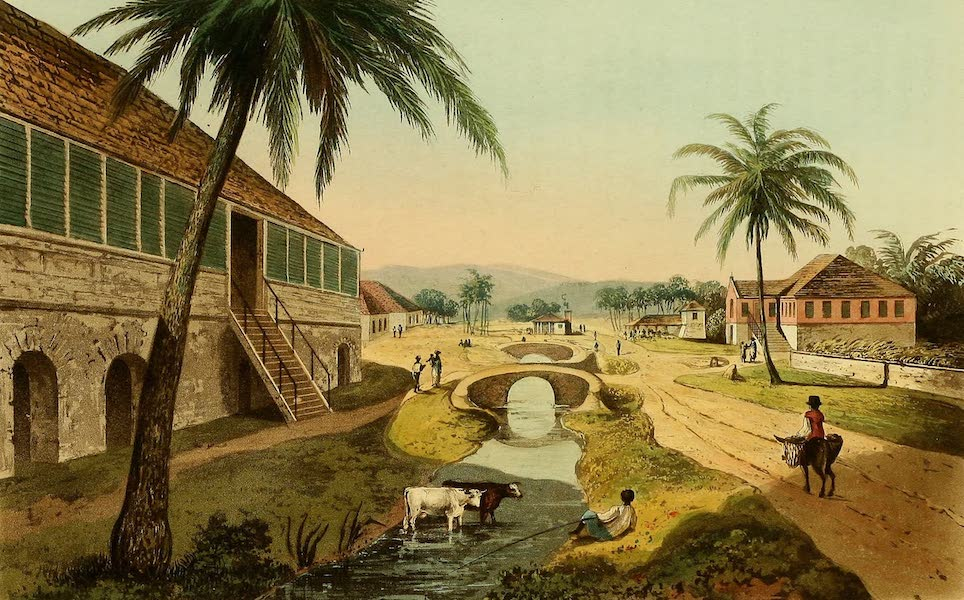 A Picturesque Tour of the Island of Jamaica - Holland Estate, St. Thomas in the East (1825)