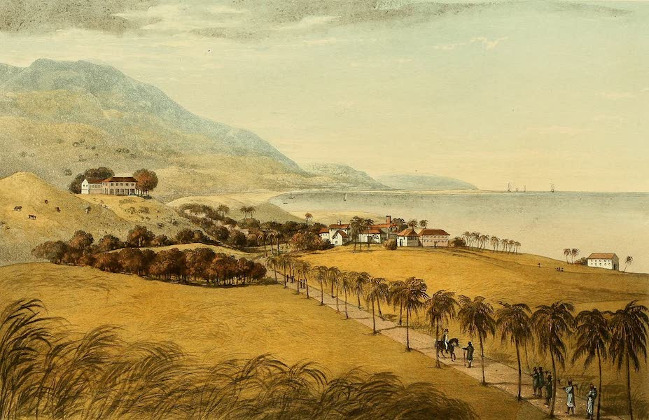 A Picturesque Tour of the Island of Jamaica - Spring Garden Estate, St. George's (1825)
