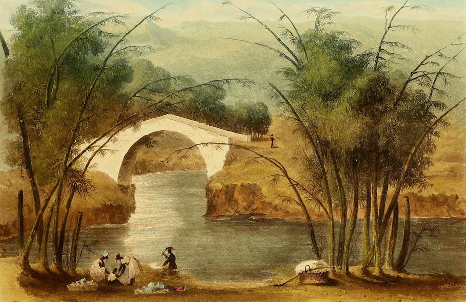 A Picturesque Tour of the Island of Jamaica - Bridge over the White River, St. Mary's (1825)