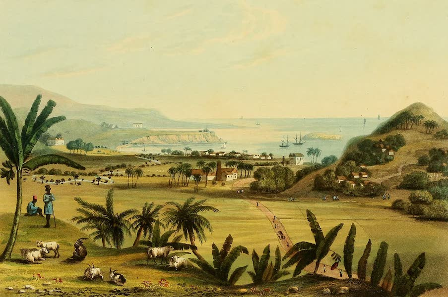 A Picturesque Tour of the Island of Jamaica - Port Maria, St. Mary's (1825)