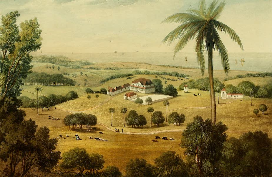 A Picturesque Tour of the Island of Jamaica - Cardiff Hall, St. Annes (1825)