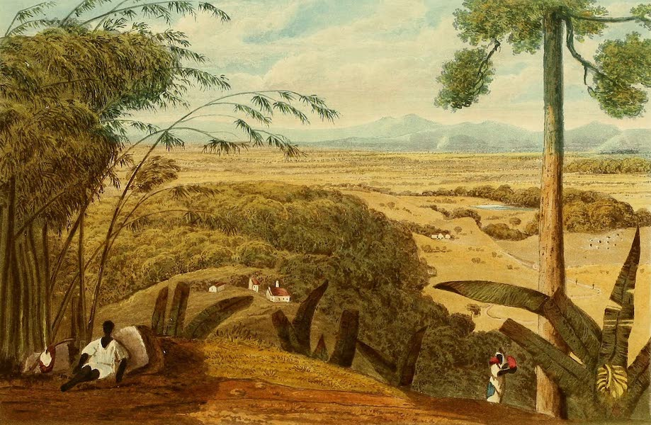 A Picturesque Tour of the Island of Jamaica - St. Thomas in the Vale, from Mount Diablo (1825)
