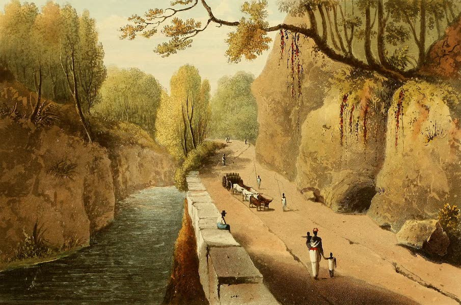 A Picturesque Tour of the Island of Jamaica - The Bog Walk (1825)