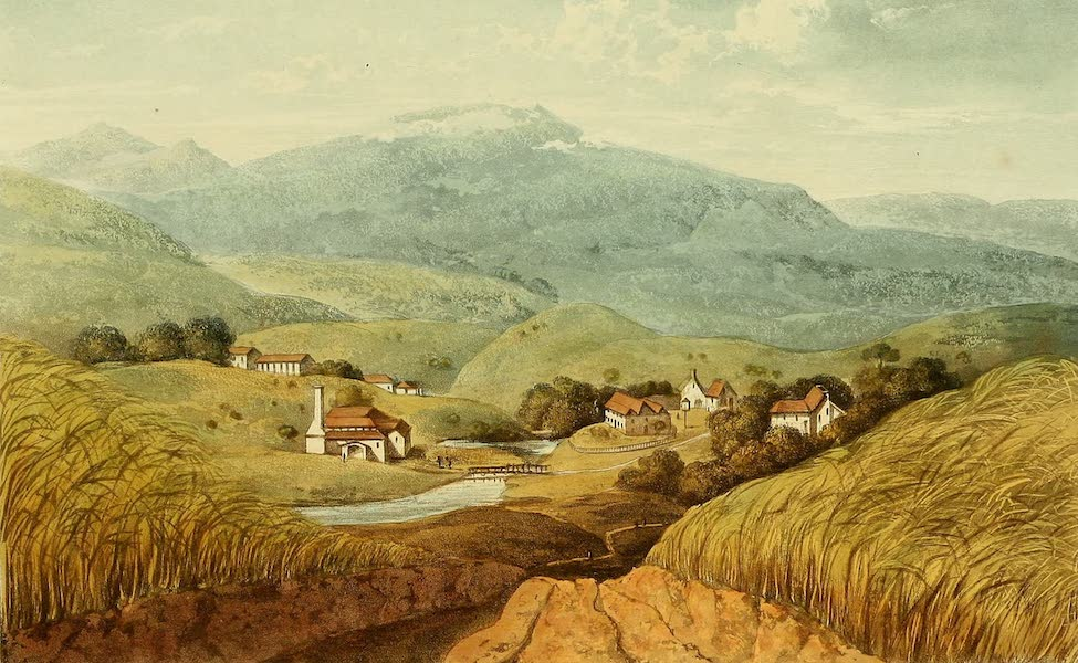 A Picturesque Tour of the Island of Jamaica - Williamsfield Estate, St. Thomas in the Vale (1825)