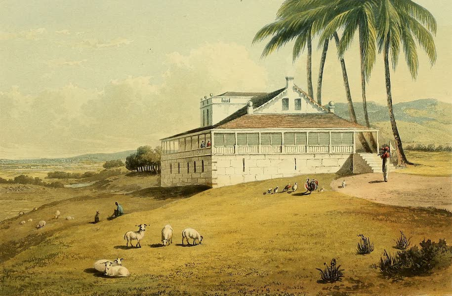 A Picturesque Tour of the Island of Jamaica - View on Bryan Castle, Great House, Trelawny (1825)