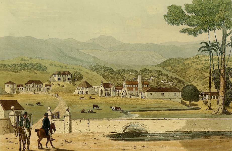A Picturesque Tour of the Island of Jamaica - Montpelier Estates, St. James (1825)