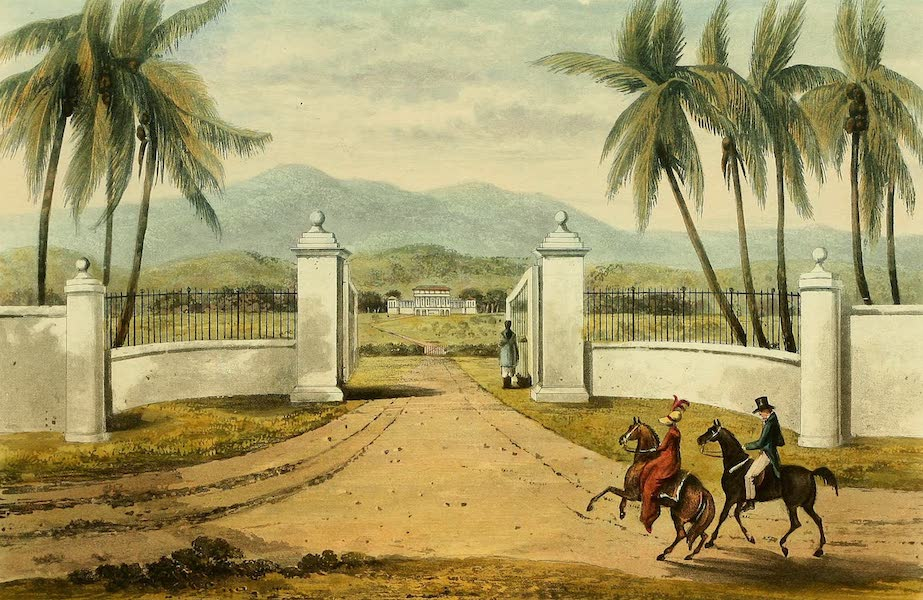 A Picturesque Tour of the Island of Jamaica - Rose-Hall, St. James's (1825)