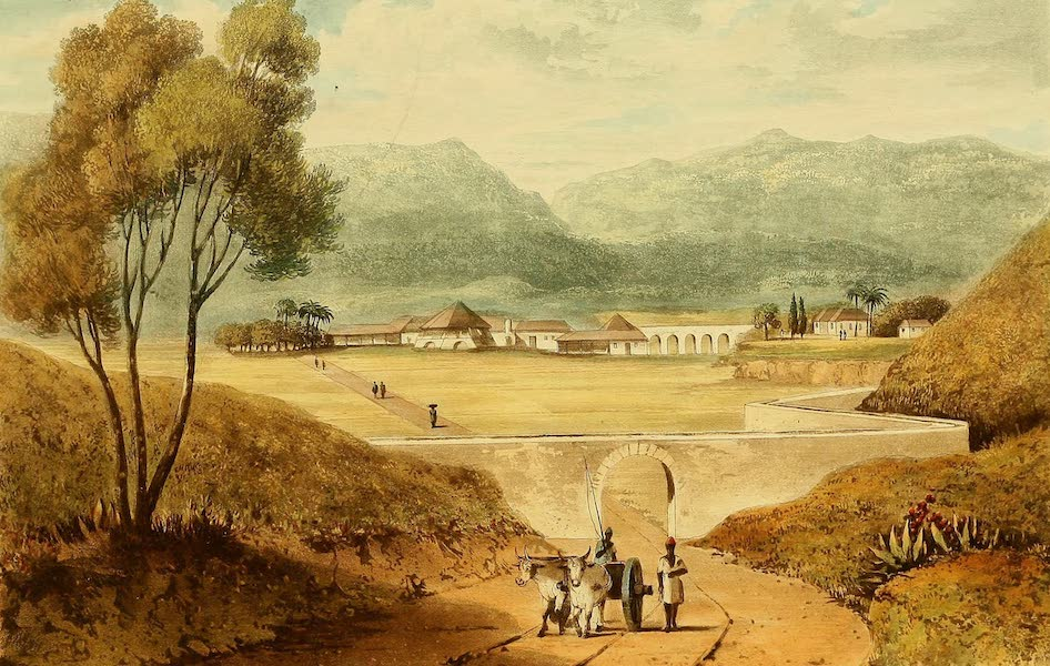 A Picturesque Tour of the Island of Jamaica - Whitney Estate, Clarendon (1825)