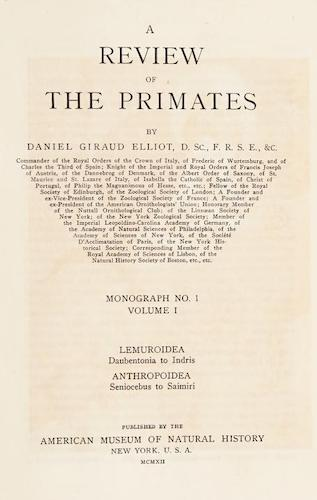 Aquatint & Lithography - A Review of the Primates Vol. 1