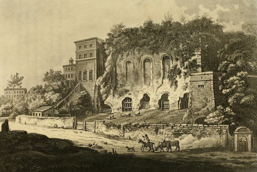 A Select Collection of Views and Ruins in Rome - the Ruins of Caesar's Palace (1815)