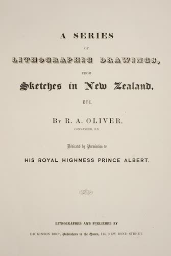 English - A Series of Lithographic Drawings from Sketches in New Zealand