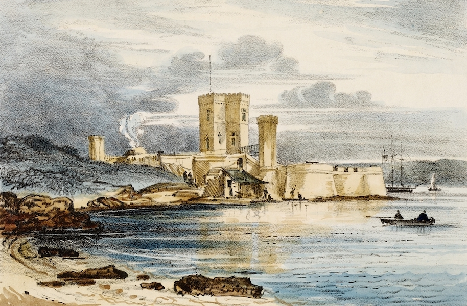 A Series of Lithographic Drawings of Sydney - Fort Macquarie, Government Domain (1836)