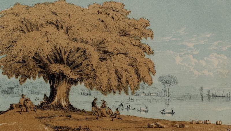 A Sketcher's Tour Round the World - Singapore (1854)