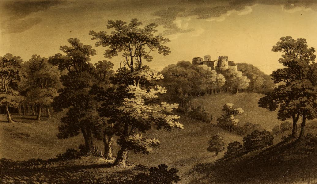 A Tour Throughout South Wales and Monmouthshire - Dinevawr Castle (1803)
