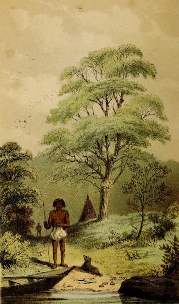 A Two Years Cruise off Tierra del Fuego Vol. 2 - The Fuegian and His Food (1857)