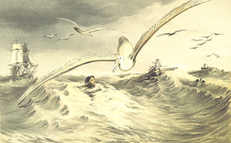 A Visit to the Indian Archipelago, in H.M.S. Maeander - Man Overboard (1853)