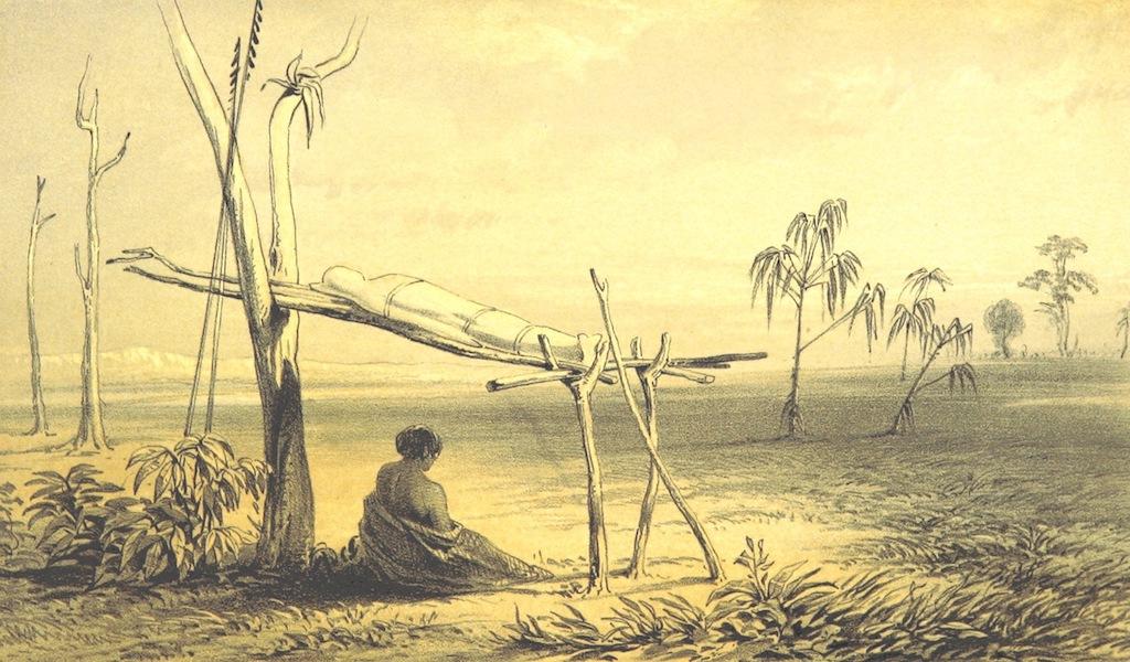 A Visit to the Indian Archipelago, in H.M.S. Maeander - Native Bier - Port Essington (1853)