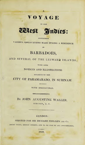 Andes - A Voyage in the West Indies