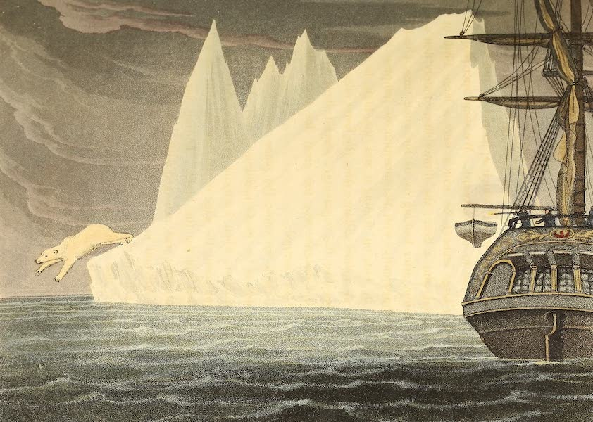 A Voyage of Discovery - A Bear Plunging into the Sea (1819)
