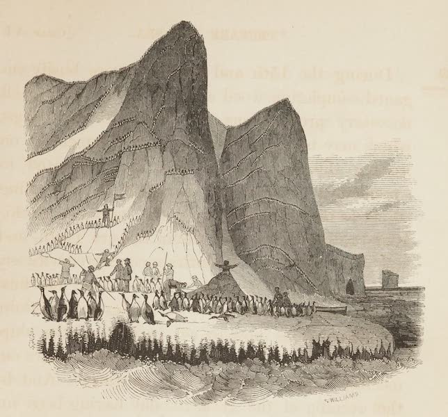 A Voyage of Discovery and Research in the Southern and Antarctic Regions Vol. 1 - Possession Island, Victoria Land (1847)