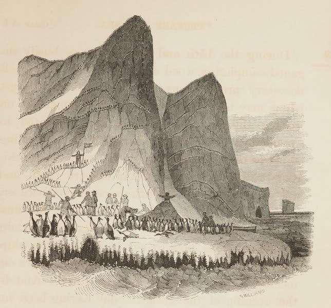 Possession Island, Victoria Land