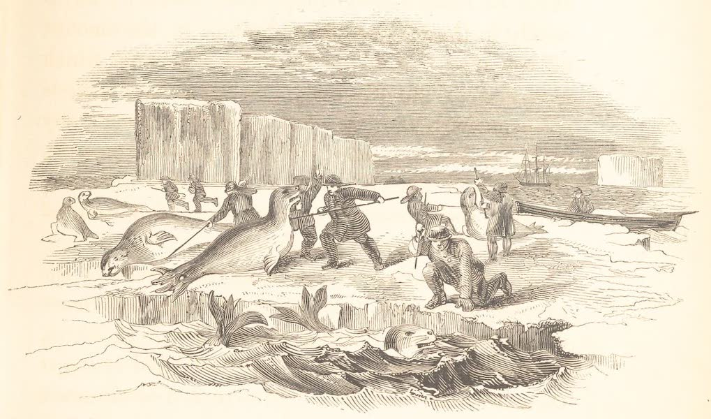 A Voyage of Discovery and Research in the Southern and Antarctic Regions Vol. 2 - Seal Hunting (1847)