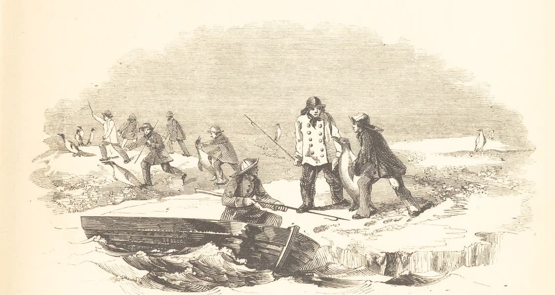A Voyage of Discovery and Research in the Southern and Antarctic Regions Vol. 2 - Catching Great Penguins (1847)