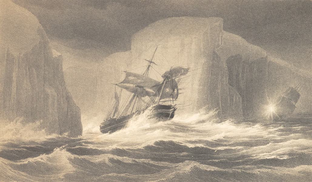 A Voyage of Discovery and Research in the Southern and Antarctic Regions Vol. 2 - Tussac Grass of Falkland Islands (1847)