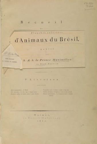 Abbildungen zur Naturgeschichte Brasiliens (1822)