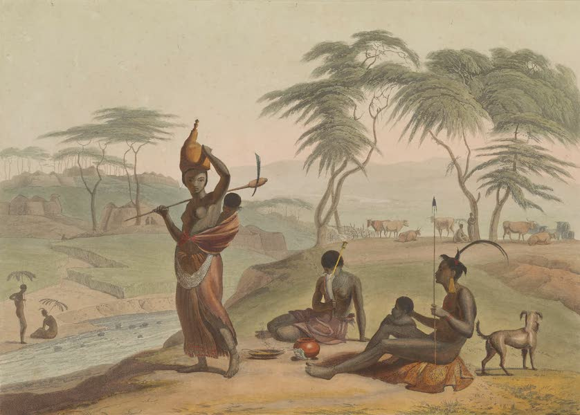 African Scenery and Animals - Boosh-Wannahs (1804)