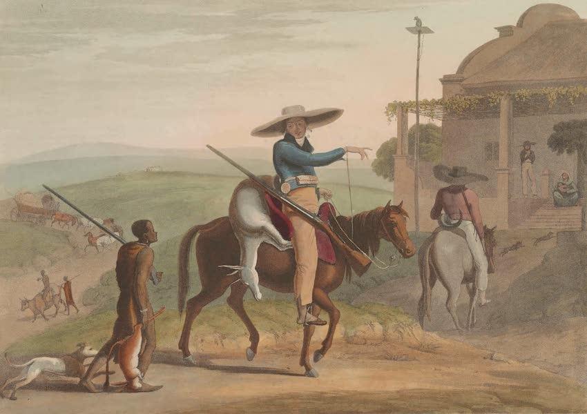 African Scenery and Animals - The Hippopotamus (1804)