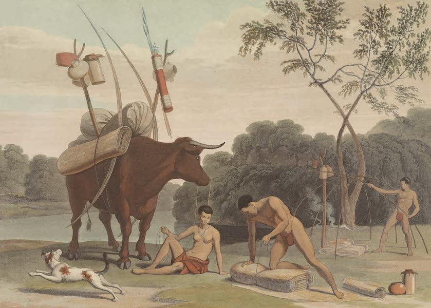 African Scenery and Animals - Korah Hottentots Preparing to Remove (1804)
