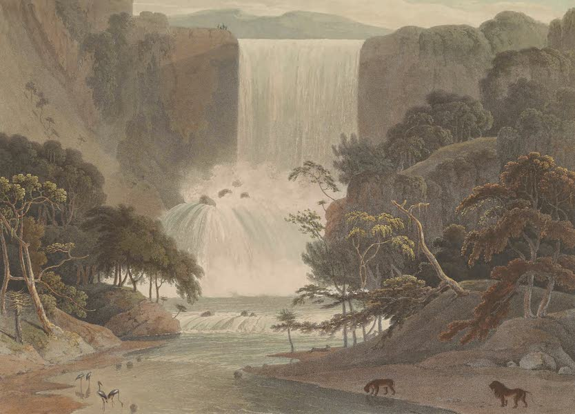 African Scenery and Animals - Cascade on Sneuwberg (1804)