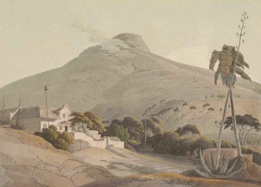 African Scenery and Animals - View of the Lion's Head (1804)
